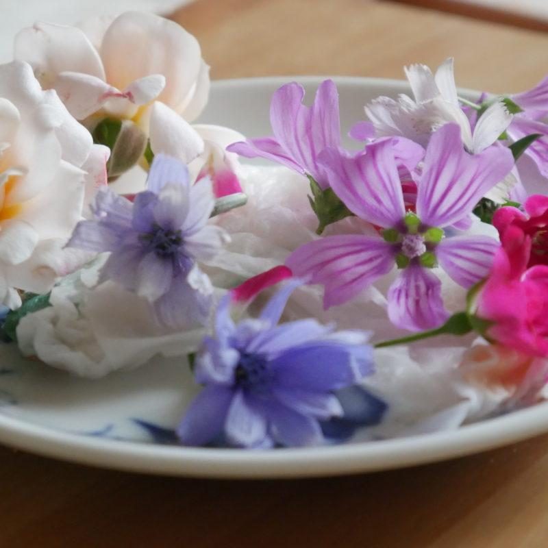 I fiori del nostro giardino!